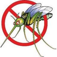 Repelente antimosquitos casero